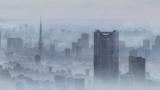 雨にけむる東京の街並みがリアル(C)2019「天気の子」製作委員会
