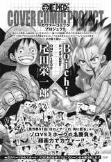 カヴァーコミックプロジェクト(C)尾田栄一郎・Boichi/集英社