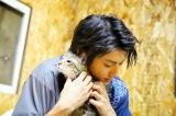 子猫を抱いてウットリする山田裕貴(C)NHK