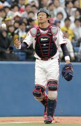 ヤクルトスワローズ時代の古田敦也氏(写真提供:TBS)