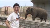 『7.2 新しい別の窓』第17回、動物園の飼育作業を手伝う草なぎ剛(C)AbemaTV