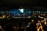 米津玄師の新曲「馬と鹿」MVを鏡に囲まれた空間で上映