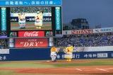 バックスクリーンに映し出される始球式の様子