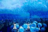 傘ダンスも披露した「世界には愛しかない」=欅坂46『夏の全国アリーナツアー2019 追加公演 in 東京ドーム』より Photo by 上山陽介