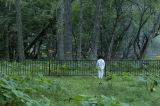 『約束のネバーランド』が実写映画化決定(C)白井カイウ・出水ぽすか/集英社