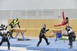 谷川翔が得意のあん馬で敵を蹴散らしゼロワンと共闘=『世界体操』PR映像でコラボ