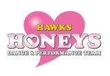ホークス『ハニーズ』が2020年度メンバーオーディションを実施 (C)SoftBank HAWKS
