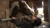 馬を溺愛する「こはくくん」など登場「結婚したい!中学生と馬の禁断愛?」(11月27日(水)放送)