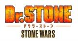 第2期制作が決まったテレビアニメ『Dr.STONE』 (C)米スタジオ・Boichi/集英社・Dr.STONE製作委員会