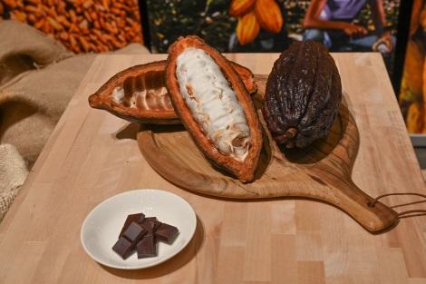 サムネイル チョコ好き女子歓喜?高カカオチョコレート摂取でお肌の潤いに期待か。