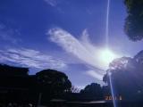 「雲が鶴の羽のように綺麗でした」という空(写真は公式ブログより)