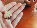 絢香&長女がクッキー作り 水嶋家の一コマ(写真は水嶋ヒロ公式ブログより)