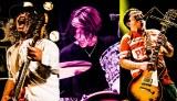 サンボマスター初のトリビュートアルバムが3月25日にリリース