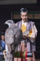 鷹の絵を描くのを好む土岐頼芸(尾美としのり)(C)NHK