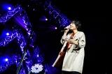 昨年末の大阪城ホール公演の模様 Photo by 渡邉一生