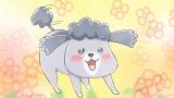 アニメ「犬と猫どっちも飼ってると毎日たのしい」のPV場面カット (C)松本ひで吉・講談社/犬と猫製作委員会
