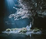 Aimer 18枚目シングル「春はゆく/marie」通常盤