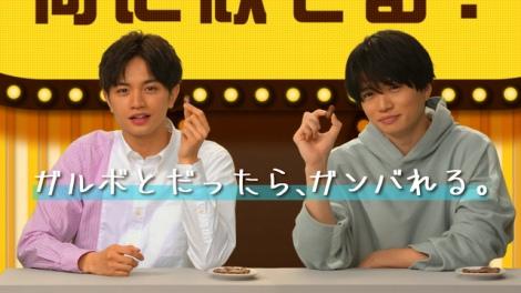 明治『ガルボ』WEBCMに出演するSexy Zone(左から)中島健人、菊池風磨