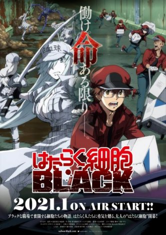 2021年1月TVアニメ化が決定した『はたらく細胞BLACK』
