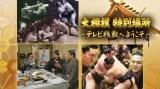 中止となった大相撲夏場所の初日(5月24日)、八日目(5月31日)、千秋楽(6月7日)の日程に合わせ、『大相撲特別場所〜テレビ桟敷へようこそ』を放送(C)NHK