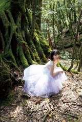 屋久島の深い森の中での幻想的なショットも(C)ワニブックス