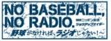 『ニッポン放送ショウアップナイター』も6・19に開幕(C)ニッポン放送