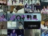 乃木坂46『のぎ動画』6・21開始
