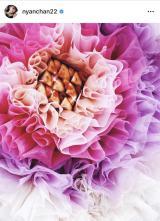 小嶋陽菜が「大好き」なタルトとドレスのコラボショット(写真は本人インスタグラムより)