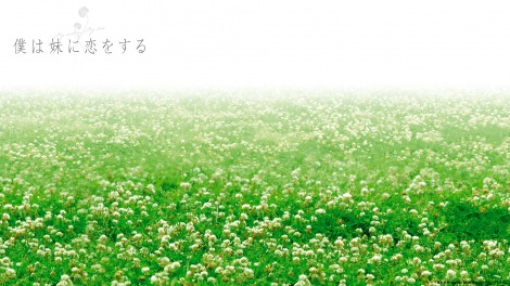 映画『僕は妹に恋をする』のバーチャル背景 (C)青木琴美・小学館/2006「僕妹」フィルムパートナーズ