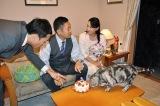 特注のネコ用ケーキを気に入ってくれたみたい(C)テレビ朝日