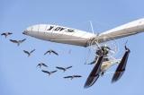 ほぼCG無し! 飛んでる鳥に触れそうな驚異の飛行映像