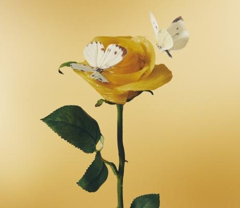 あいみょん3rdアルバム『おいしいパスタがあると聞いて』初回限定盤ジャケット