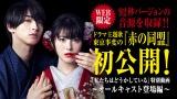 日本テレビ系連続ドラマ『私たちはどうかしている』の主題歌入り特別動画がYouTube日テレ公式チャンネルにて公開(C)日本テレビ