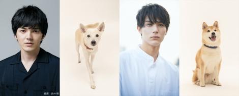 (左から)林遣都と花子役のちえ、中川大志と太郎役のきぃ (C)2021「犬部!」製作委員会