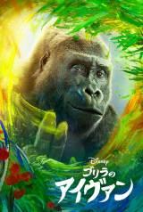 ディズニー映画『ゴリラのアイヴァン』Disney+(ディズニープラス)で9月11日より日本公開 (C)2020 Disney