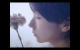 主演ドラマの主題歌、いきものがかり「きらきらにひかる」MVに出演した波瑠