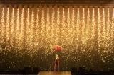 アリーナツアー『KODA KUMI 20th ANNIVERSARY TOUR 2020 MY NAME IS...』の模様