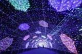 『クリスタル・パサージュ』=『よみうりランド ジュエルミネーション〜黄金と誕生石のRESONANCE〜』