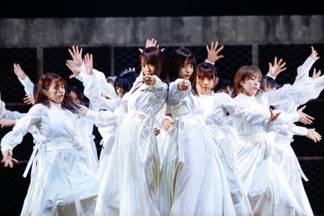 『欅坂46 THE LAST LIVE』で櫻坂46 1stシングル「Nobody's fault」を初披露 Photo by 上山陽介
