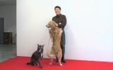 22日放送の『坂上どうぶつ王国』で、坂上忍が愛犬とファッション誌デビューを飾る様子に密着(C)フジテレビ