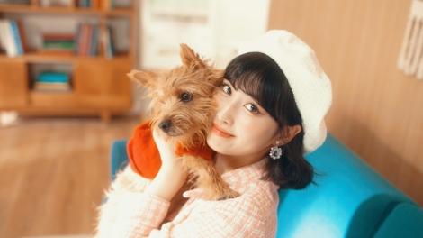 MOMOの愛犬ブーちゃんもMV初登場