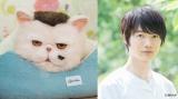 『おじさまと猫』主人公・神田の愛猫・ふくまる(声:神木隆之介)(C)「おじさまと猫」製作委員会