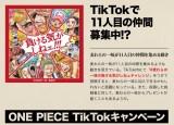 『ONE PIECE』キャンペーンサイト (C)尾田栄一郎/集英社