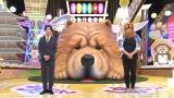『関西愛認定バラエティー ちゃうんちゃう?』に出演する(左から)村上信五、くっきー!(C)NHK