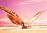 『モスラ』4Kデジタルリマスター版(C)1961 東宝=「午前十時の映画祭11」復活&ラインナップ発表