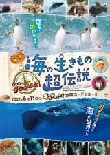 『驚き!海の生きもの超伝説 劇場版ダーウィンが来た!』6月11日公開