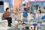 テレビ朝日系『あざとくて何が悪いの?』に出演する(左から)山里亮太、田中みな実、弘中綾香 (C)テレビ朝日