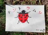 香川照之の昆虫すごいぜ!『春だよ!課外授業はテントウムシ』よりカマキリ先生が描いた今回のターゲット(C)NHK