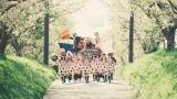 日向坂46の2期生曲「世界にはThank you!が溢れている」MV
