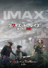 IMAXで味わえる極限の沈黙世界